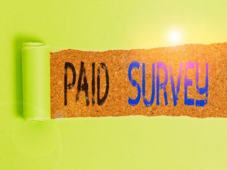 survey bayar