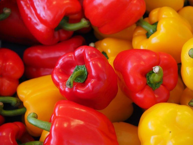 buah paprika