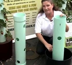 cara membuat kebun vertikal