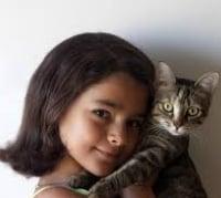 kucing sahabat manusia
