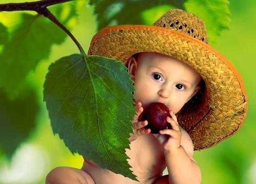 anak makan buah