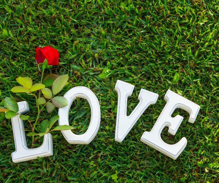 tipe cinta