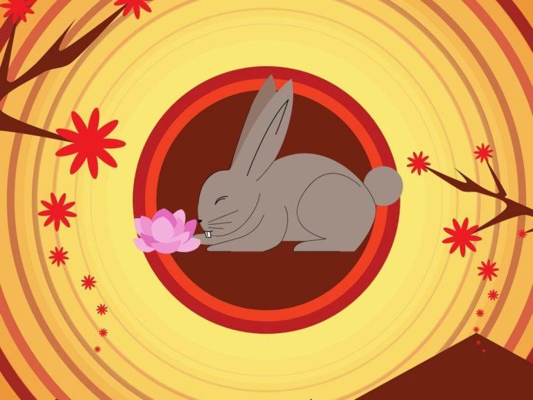 ramalan shio kelinci